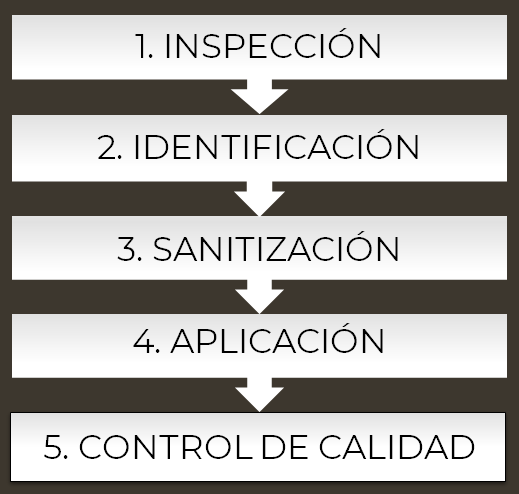Protocolo de Trabajo